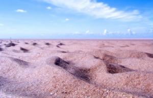Sand am Meer – schwierige Entscheidungen können durch ein Zuviel an Optionen kommen